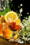 Té de la fruta con el limón Foto de archivo libre de regalías