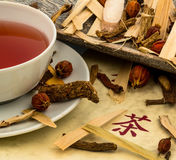 Té de la medicina china tradicional Fotos de archivo libres de regalías