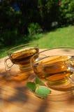 Té de la taza en el jardín Fotografía de archivo