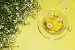 Té de las flores de la manzanilla Imagen de archivo libre de regalías