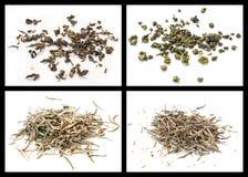 Té de Oolong y té del blanco Fotografía de archivo libre de regalías