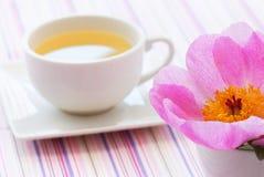 té de tarde Imagen de archivo libre de regalías