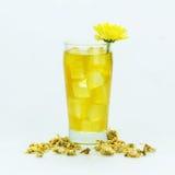 Té del crisantemo Fotografía de archivo libre de regalías
