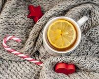 Té del invierno con la bufanda Foto de archivo libre de regalías