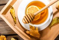 Té del jengibre del otoño que se calienta con la miel y el limón Foto de archivo libre de regalías