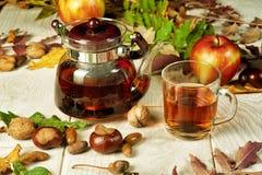Té del otoño, aún vida con té Fotografía de archivo libre de regalías