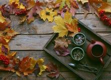Té del otoño, tetera en un fondo de madera, hojas de otoño Imágenes de archivo libres de regalías