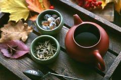 Té del otoño, tetera en un fondo de madera, hojas de otoño Imagen de archivo libre de regalías