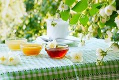 Té del verano con la miel debajo del arbusto del jazmín Imagen de archivo libre de regalías