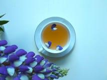 Té en una taza blanca con las flores lupine azules, fondo azul foto de archivo