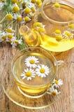 Té herbario con las flores de la manzanilla Foto de archivo