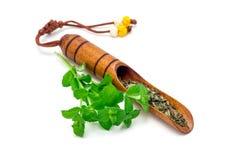 Té herbario seco de la menta en cucharada de madera coreana tradicional del té e hierbabuena fresca en el fondo, aislado, horizon Foto de archivo libre de regalías