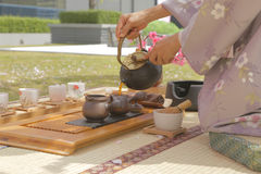 Té japonés debajo del árbol de Sakura Fotografía de archivo