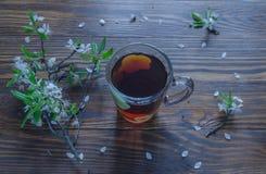 Té negro en una rama de la taza y de la cereza que miente en superficie de madera Color del vintage Foco selectivo Imagenes de archivo