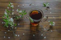 Té negro en una rama de la taza y de la cereza que miente en superficie de madera Foco selectivo Imagen de archivo