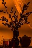 Té romántico de la tarde para aún la vida dos, con las ramitas hermosas del sauce en florero Foto de archivo libre de regalías