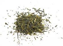 Té verde chino (sinensis del camella) Imágenes de archivo libres de regalías