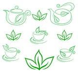 Té verde, colección del vector Fotografía de archivo libre de regalías