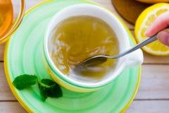 Té verde con el sistema del ginseng y del sabio Foto de archivo