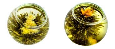 Té verde con los crisantemos Imagenes de archivo