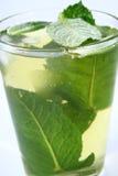 Té verde del hielo Imágenes de archivo libres de regalías