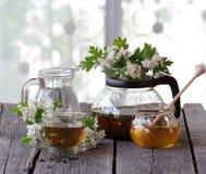 Té verde en una taza de cristal, miel y una rama de un espino floreciente Fotos de archivo libres de regalías