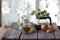 Té verde en una taza de cristal, miel y una rama de un espino floreciente Fotos de archivo