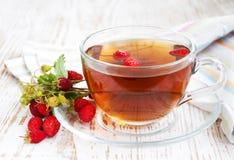 Té y fresas salvajes Fotografía de archivo