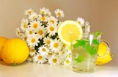 Té y limón de la flor del crisantemo foto de archivo libre de regalías