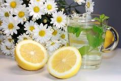 Té y limón de la flor del crisantemo imágenes de archivo libres de regalías