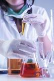 Técnico de laboratório Dealing With Flasks que contém produtos químicos líquidos imagens de stock royalty free