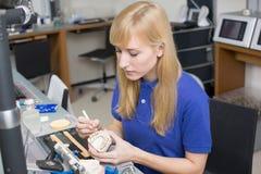 Técnico de laboratório dental que aplica a porcelana ao molde da dentição imagem de stock royalty free