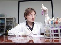 Técnico de laboratorio con el espécimen Imágenes de archivo libres de regalías