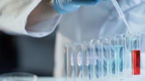 Técnico de laboratorio que añade el concentrado a diversos reactivo para seguir dinámica de las reacciones foto de archivo