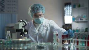 Técnico de laboratorio que estudia muestras de sangre para detectar las patologías, investigación médica almacen de metraje de vídeo