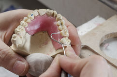 Técnico dental que faz dentaduras parciais de resinas acrílicas fotos de stock
