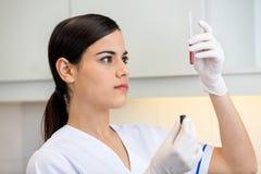 Técnico Examining Blood Sample Fotos de archivo