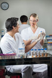 Técnicos felices que analizan la muestra en laboratorio Fotografía de archivo