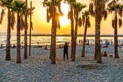 Téléphone Aviv Sunset Photographie stock libre de droits