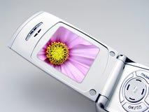 Téléphone d'appareil-photo Photos libres de droits