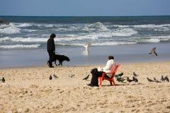 téléphone de plage d'aviv Image stock