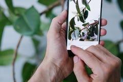 Téléphone mobile d'innovation de technologie d'art de photographie image stock