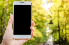 Téléphone portable blanc à disposition un jeune homme d'affaires de hippie dedans sur le fond de l'herbe naturelle verte Photos stock