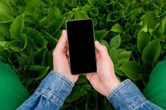 Téléphone portable dans des mains un jeune homme d'affaires de hippie Photo libre de droits