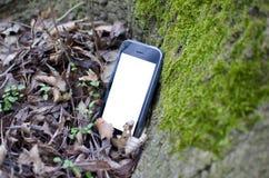 Téléphone sur l'écorce d'arbre dans la forêt Image libre de droits