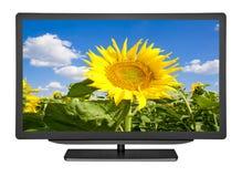 Télévision images libres de droits