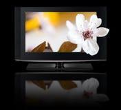 télévision 3D. Affichage à cristaux liquides de TV dans HD 3D. Photographie stock