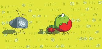 Télévision de observation de grenouille Image stock