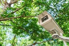 Télévision en circuit fermé sous des arbres Photographie stock
