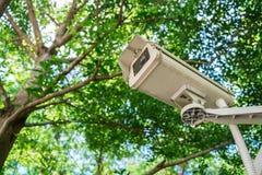 Télévision en circuit fermé sous des arbres Photo libre de droits